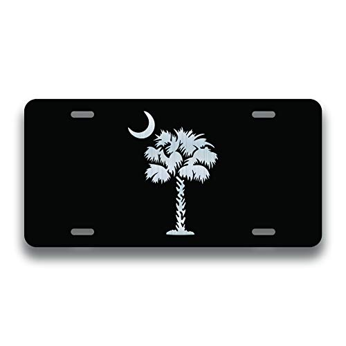 Top 9 South Carolina License Plate – License Plate Covers