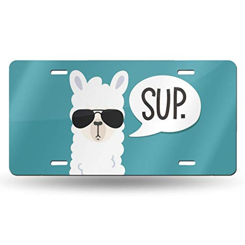 Top 10 Llama Gifts for Girls – License Plate Covers